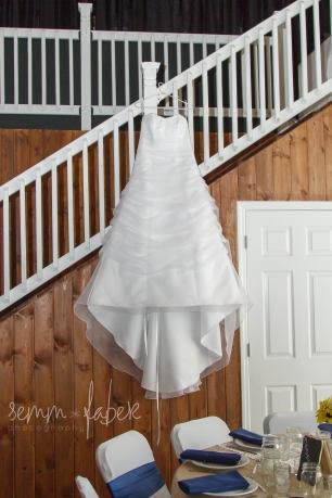 Bride Dress Photography