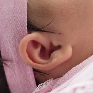 Baby Ear